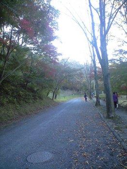 94宮沢湖2.JPG