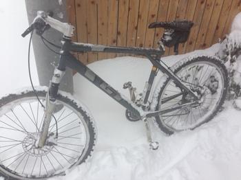自転車1.jpeg