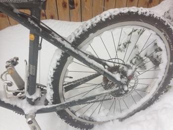 自転車2.jpeg